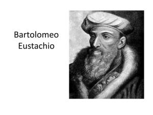 bartolomeo-eustachio-n